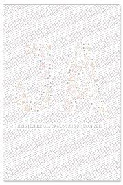 Hochzeitskarte Ja