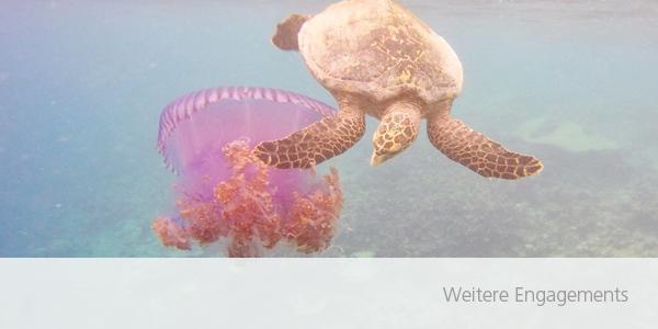 UeberUns_Nachhaltigkeit_schmal - weitere