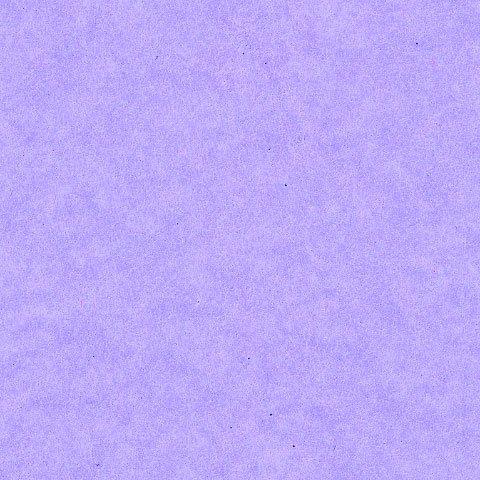 tissue paper/50x76cm/4 pcs./violet