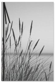 Trauerkarte Gräser