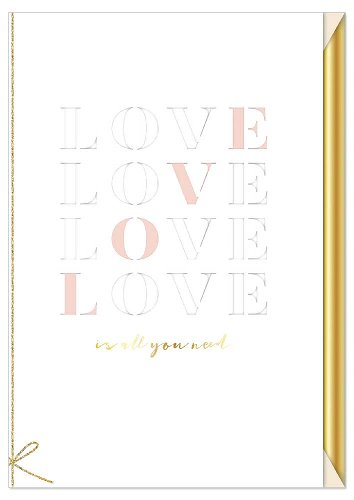 Hochzeitskarte Spruch Love is all you need
