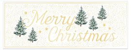 Christmas card Merry Christmas fir trees