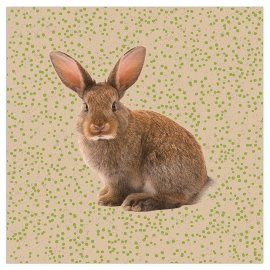 Napkin organics rabbit dots