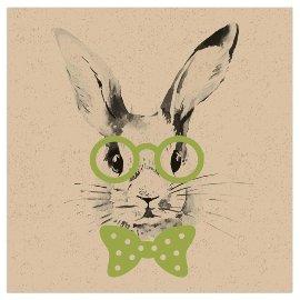 Napkin organics rabbit green
