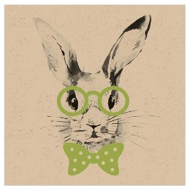 Napkin organics rabbit green