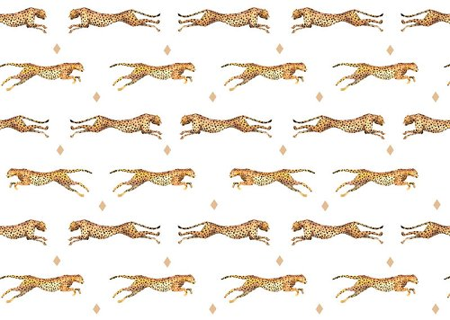 Wrapping paper finest cheetah
