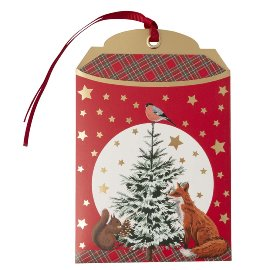 Gift envelope Christmas animals B6